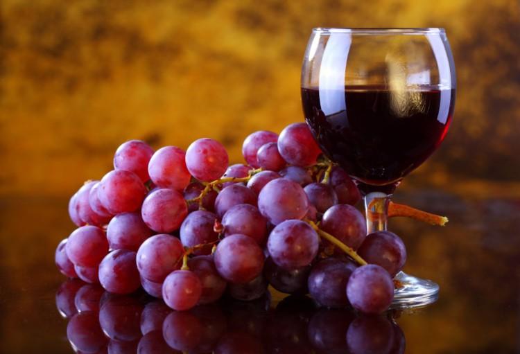 Resveratrol - the french paradox