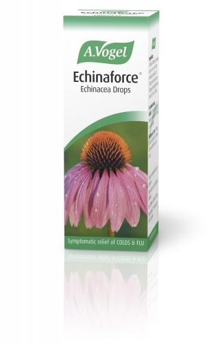 Echinaforce Echinacea Drops, 100 ml - A Vogel